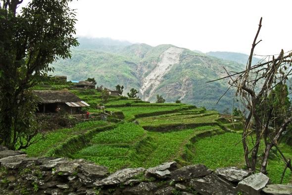 Himalayan hills