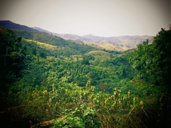 Stunning green hills