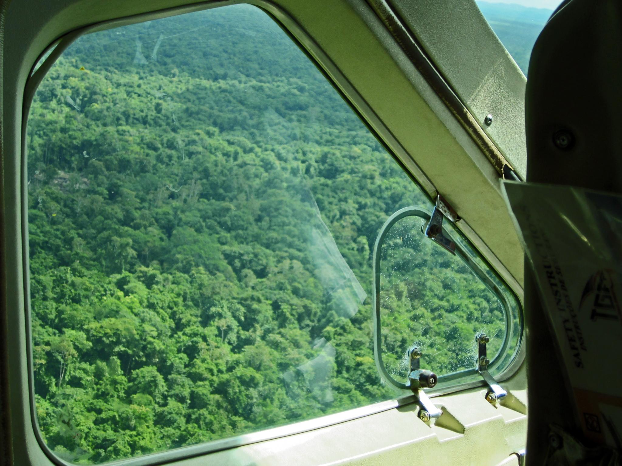 Plane over northern Guyana