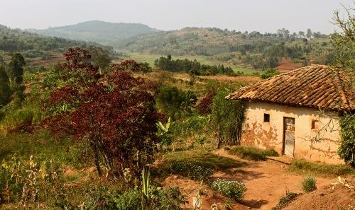 South Rwanda countryside