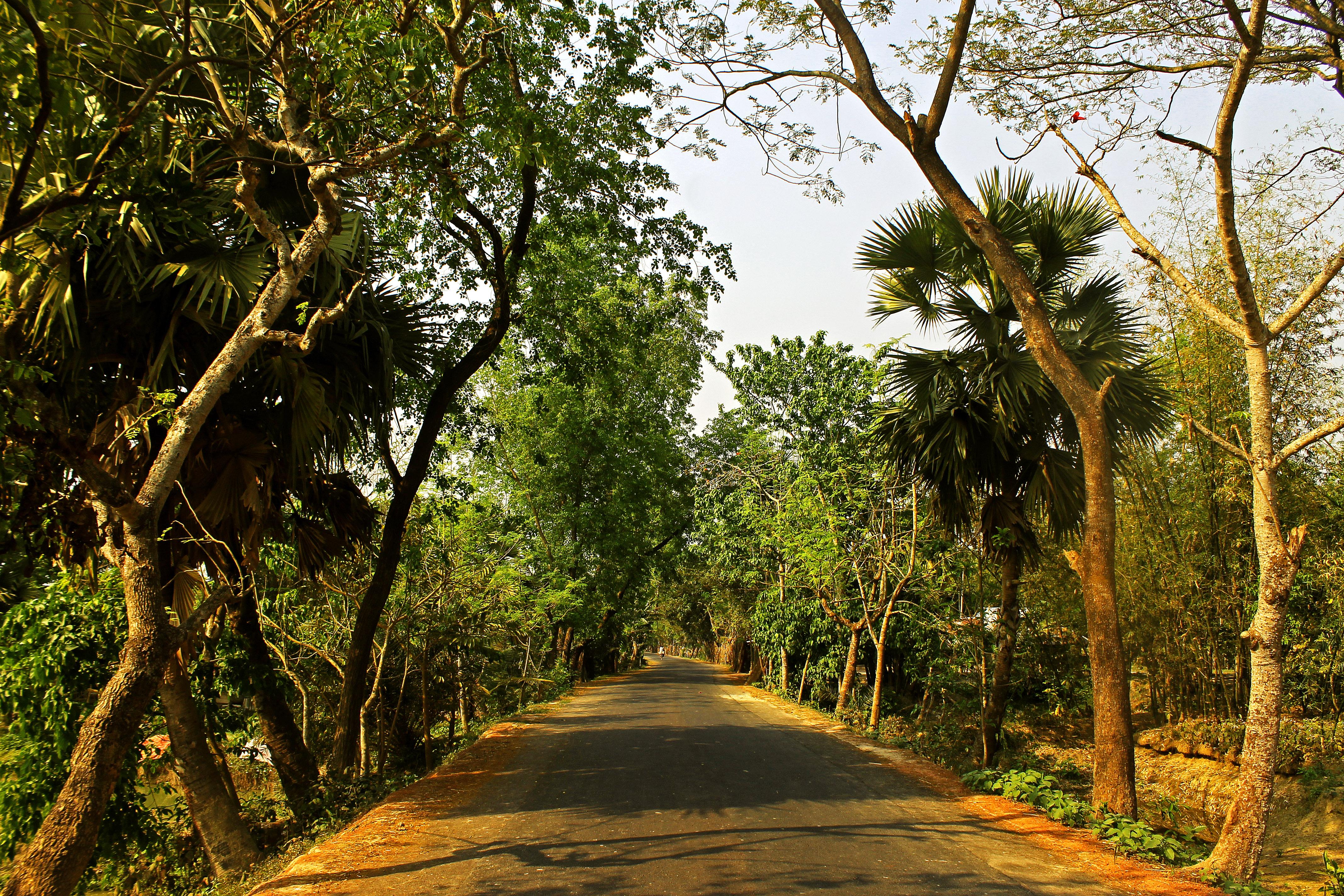 Jessore, Bangladesh