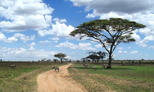 Tanzania and Zanzibar 2010 124