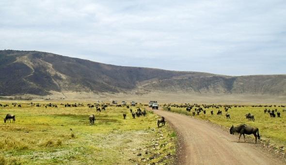 Tanzania and Zanzibar 2010 259